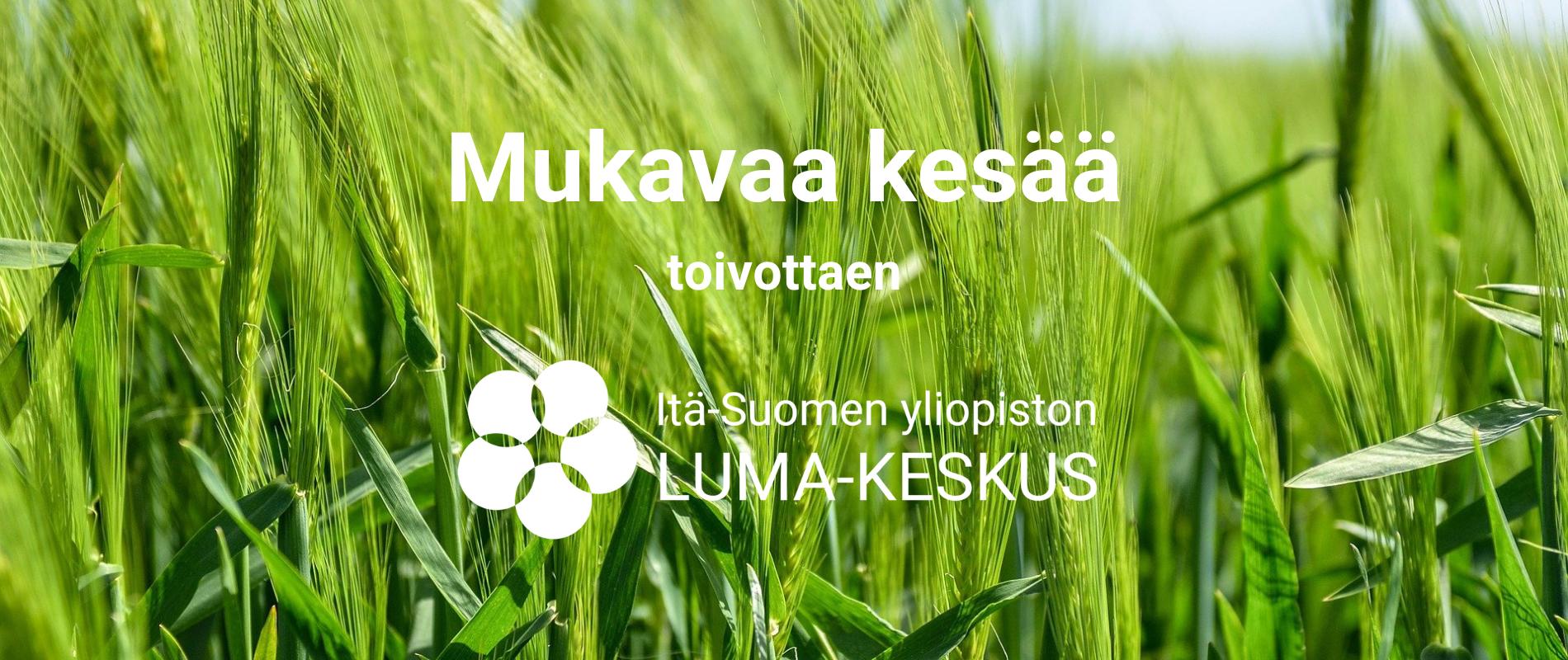 Taustalla vihreää viljaa ja teksti Mukavaa kesää toivotaten Itä-Suomen yliopiston LUMA-keskus.
